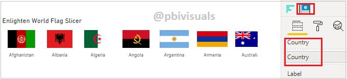 Enlighten World Flag Custom visual